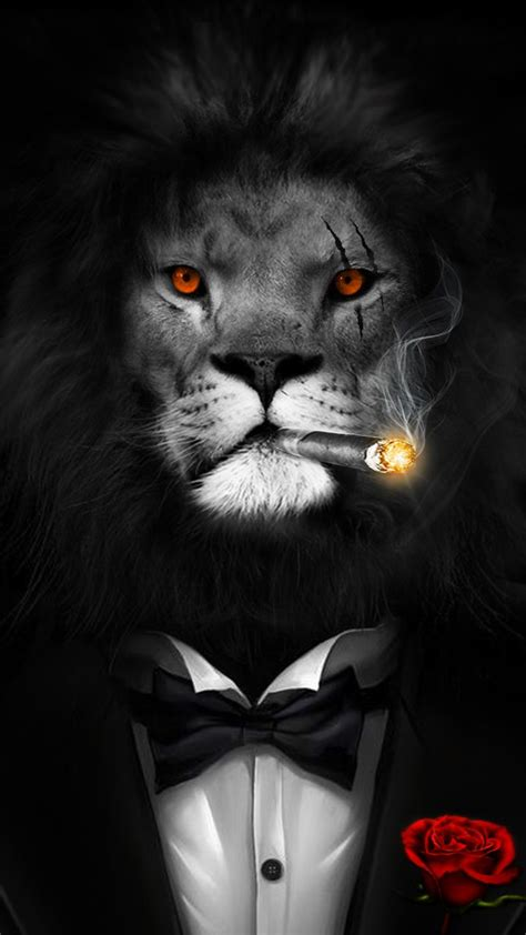 big boss courage bravery  smart lion wallpaper