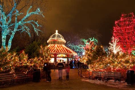 2018 christmas light displays in chicagland zoolights chicago at lincoln park zoo