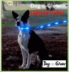 visiglo lighted leash lighted products keepdoggiesafe com