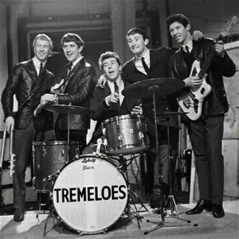 60er Len by The Tremeloes Oldiesmusicblog