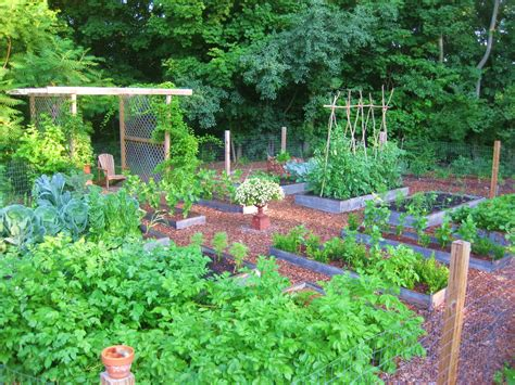 kitchen gardening ideas triyae easy backyard vegetable garden ideas