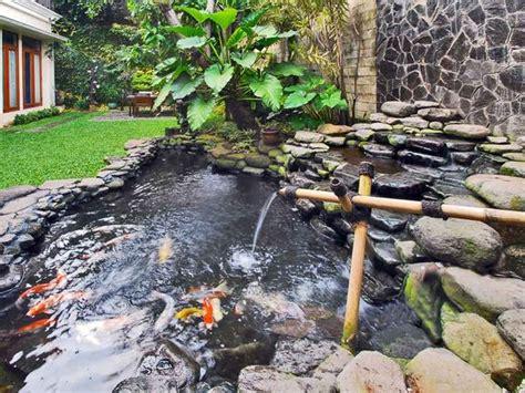 gambar kolam ikan minimalis kolam ikan koi kolam ikan hias  taman kolam ikan pond
