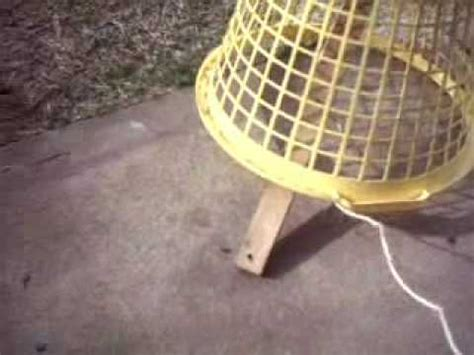 how to catch a bird youtube