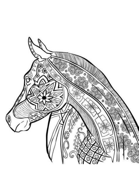 intricate horse coloring pages kids n fun 26 kleurplaten van dieren voor volwassenen
