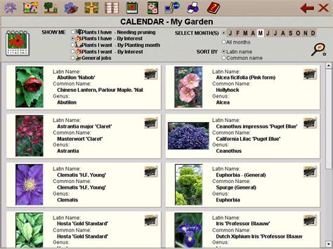 garden plants names and pictures garden plants by name pdf