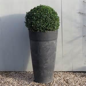 artstone planter with buxus modern garden