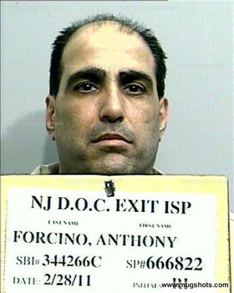Nj Arrest Records Records Anthony Forcino Mugshot Anthony Forcino Arrest