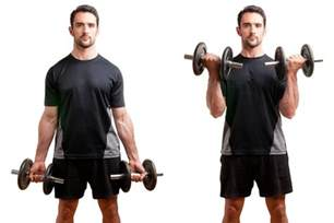 All In One Weight Bench 10 Of The Most Effective Tricep And Bicep Workouts With