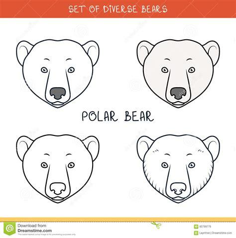 bear face template www pixshark com images galleries
