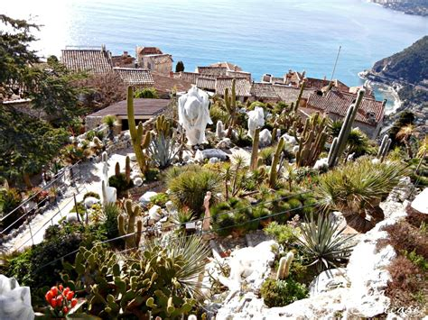Charming Cactus Garden Ideas #8: Looking-down-from-Eze-Garden-2-1024x768.jpg