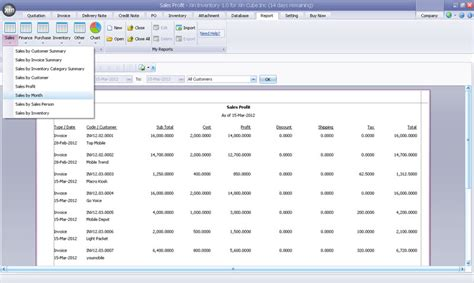 sle of inventory report invoicing software with stock management
