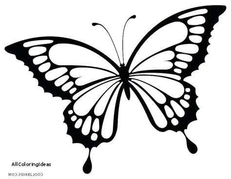 butterfly color pages coloring pages butterfly pictures surfnpig