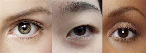 Eyeshadow Que Es 191 por qu 201 los asi 193 ticos tienen los ojos alargados