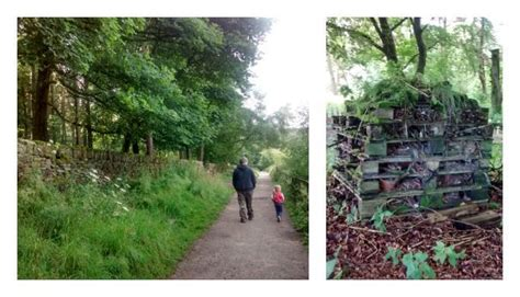 bed bugs halifax a bug hotel enchanted well on a family walk at ogden water halifax yorkshire tots