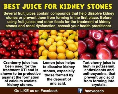 Sore Kidneys Detox by 1736 Best Sore Throat Much More Images On