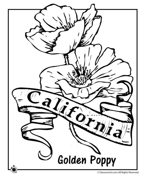 state flower coloring pages california state flower