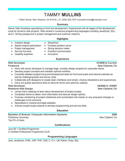 Web Developer Resume Examples   Computers & Technology