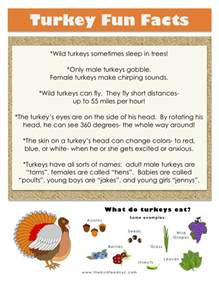facts for thanksgiving thanksgiving printable turkey fun facts