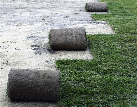 cesped alfombra cesped alfombra csped en rollo pasto alfombra alfombra