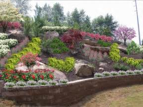hillside landscaping backyard hillside tamed