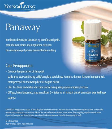 Starterkit Living Indonesia katalogeo everyday oils kit panaway living company