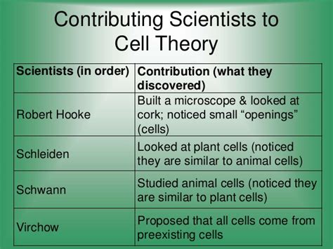pattern of cell theory theory vs law review cell theory 2