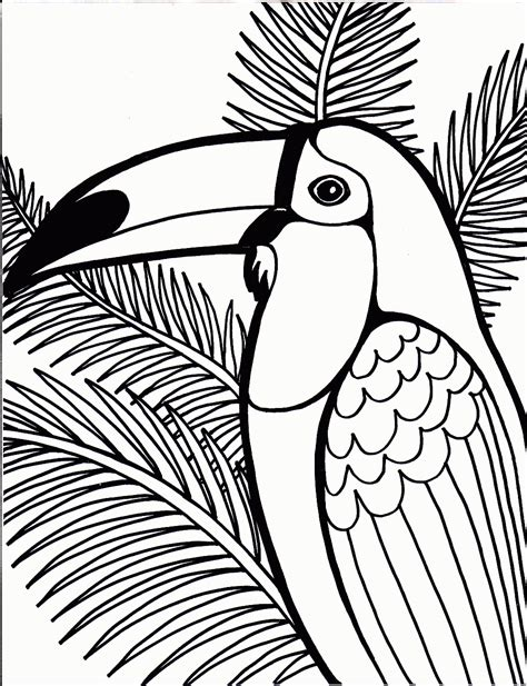 printable coloring pages of birds bird coloring pages coloring pages to print