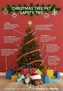 christmas tree pet safety for the fuzzies pinterest