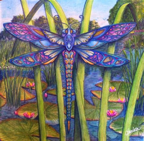 book enchanted forest by johanna basford colored by
