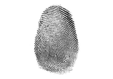 desain print lop who made those fingerprints the new york times