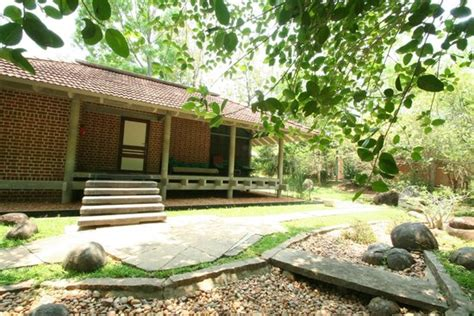 cottage picture of afsanah guest house auroville