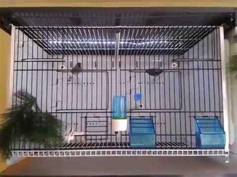 terenziani gabbie cages jaulas gabbie terenziani