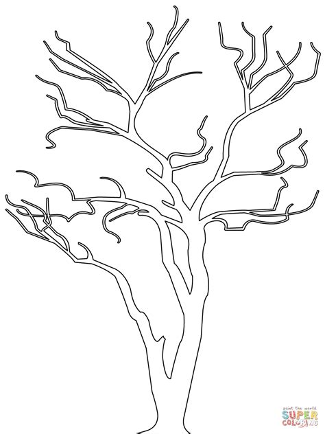 free coloring pages of a bare tree outline drawing of a tree bare tree outline coloring page
