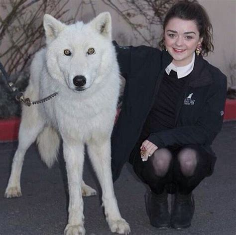 ghost actor game of thrones arya stark masie with ghost game of thrones