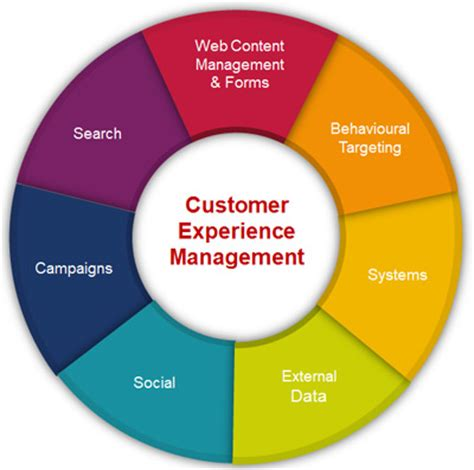 customer experience management model pictures to pin on