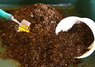 container gardening soil mix potting mix is easy to make and stores well in a sealed