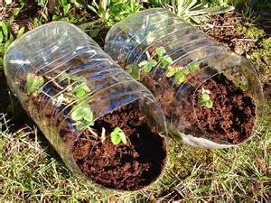 what is the best soil for container gardening why don t hungry grow food in hanging containers