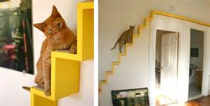 tag 187 escalier pour chat 171 www ohmycat fr