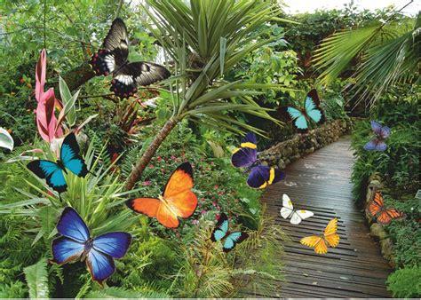 giardino farfalle the bold and forum 2 pu 242 contenere spoiler pagina 3814