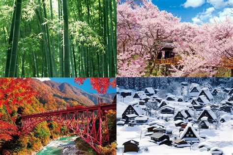 deep south four seasons image result for japanese seasons japanese and lote japan and japanese
