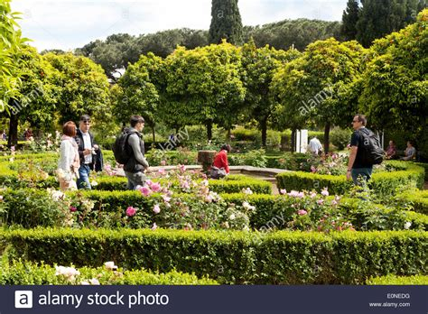 Gardens Of The Ancients by In The Ancient Gardens Of The Domus Tiberiana