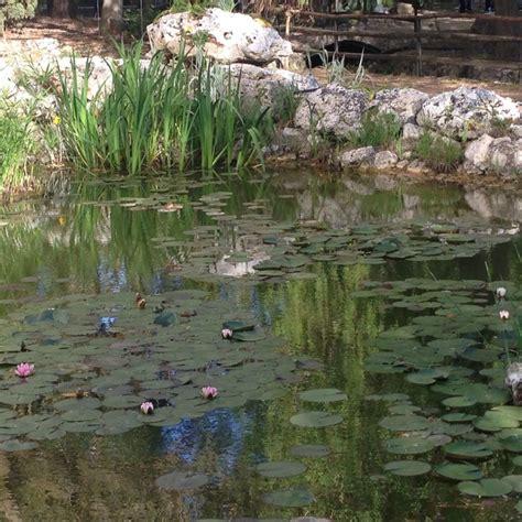 giardino botanico la cutura la cutura il giardino segreto nel cuore salento