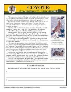 Free Printable 7th Grade Reading Comprehension Worksheets by Coyote 7th Grade Reading Coyotes And Comprehension