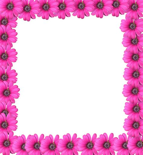 pink flower frame photo hq png image freepngimg
