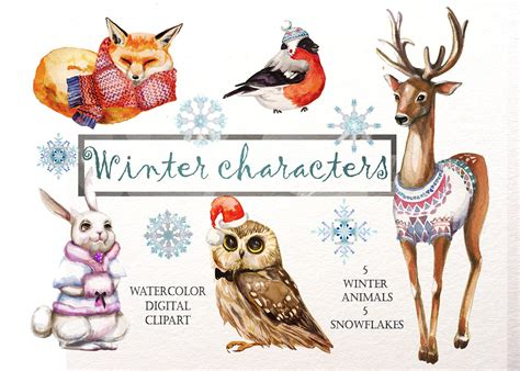 clipart illustrations watercolor winter animals illustrations creative market