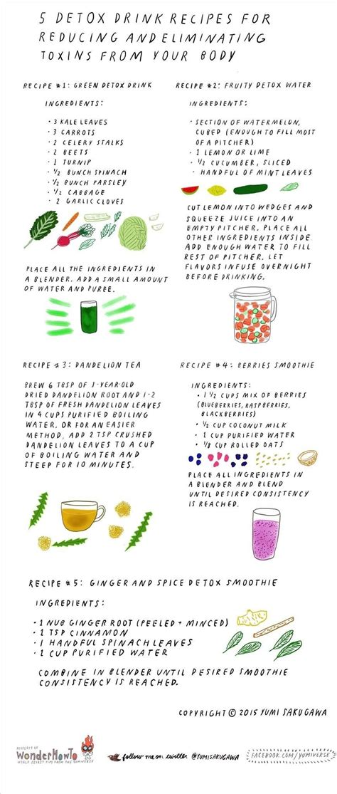 Toxin Detox Drink Recipe by 5 Detox Drink Recipes For Reducing Eliminating Toxins