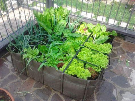 l orto in terrazza come fare l orto guida passo passo su come realizzare un