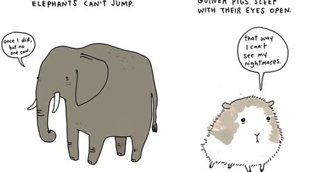 sad animal facts this illustrator is turning sad facts about animals into