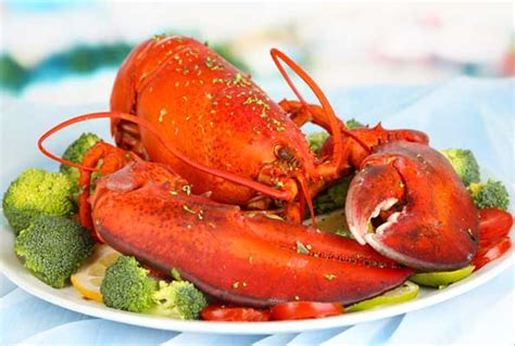 Seafood Crab Daddy S Calabash Seafood Buffet Calabash Seafood Buffet Prices