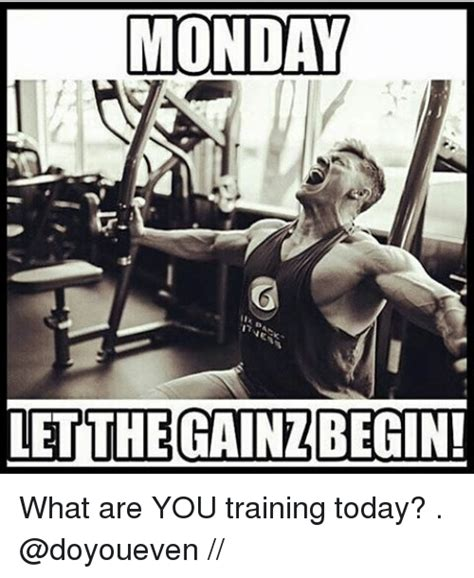 Monday Workout Meme - funny gym memes of 2017 on sizzle masculinism